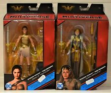 Wonder Woman Diana Of Themyscira Or Queen Hippolyta DC Comics Multiverse Figure