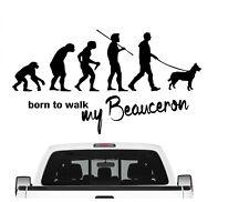 Beauceron Schäferhund Evolution Autoaufkleber Hund Aufkleber Folie Dog Sticker
