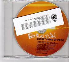(FM718) FatBoy Slim, Sunset (Bird Of Prey) - 2000 DJ CD