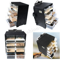 Acrylic Feeding Box Reptile Breeding Tank Insect Spider Turtle Cage Pet