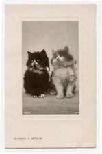 c 1910 Pair of Darling Cats photo postcard Sunshine & Shadow British photo pcrd