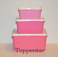 Tupperware 3 Kühlschrankbehälter, Frischebehälter Set, Kühle-Ecken Set 3 tlg