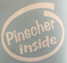 PINSCHER INSIDE DOG ON BOARD CAR WINDOW STICKER DECAL IN WHITE ALL COLOURS