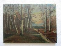 Antique SIGNED Primitive Oil on Canvas of Wooded Landscape Painting