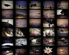 Bobine film S8 super 8 Amateur famille Vacances famille montagne fleurs
