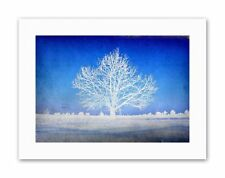 WHITE TREE BLUE SILHOUETTE PHOTO Poster Picture Illustration Canvas art Prints