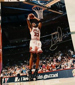 Chicago Bulls Signed Scottie Pippen  16x20 Photo 1on 1 Inc
