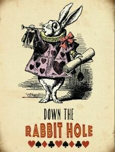 Down The Rabbit Hole  Alice In Wonderland Small Steel Sign 200mm x 150mm (og)