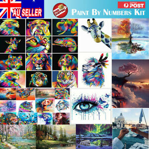 Acrylic Painting By Numbers Kit Craft DIY Paint On Canvas Frame Art Project WZ