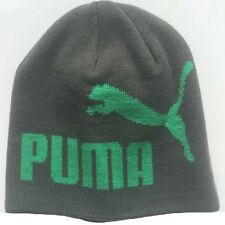 Puma Unisex Adult Big Logo Beanie Hat Grey Green Unisize