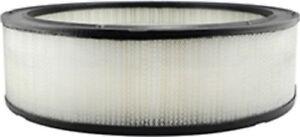 Air Filter Hastings AF809 #10-8C