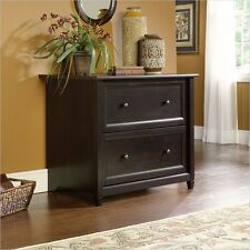 Filing Cabinet File Storage Water 2 Drawer Lateral Wood Letter in Black