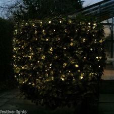 Warm White Net Fairy Lights
