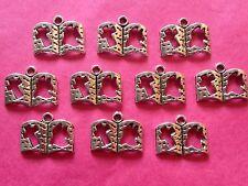 Tibetan silver Bible / livre charmes 10 Par Pack