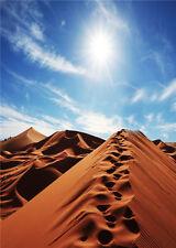 Desert Scenic Photo Backdrop Footprint Studio Vinyl Photography Background 5x7ft