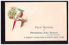 Handpainted bird with real feathers Feliz Navidad Y Prospero Ano Nuevo post card