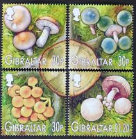 Z776 GIBRALTAR 2003 Mushrooms set of 4 Mint NH
