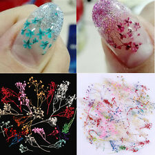10 Colors 3D Decoration Real Dry Dried Flower for UV Gel Acrylic Nail Art Tips s