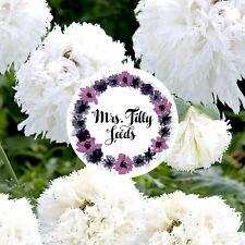 SWANSDOWN gefüllte Blüten Rarität 100 Samen Papaver Mohn Blume Garten Kübel
