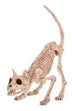 Pouncing Skeleton Kitty Cat Bonez Spooky Halloween Decor Decoration Prop NEW