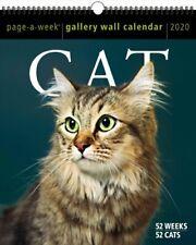 2020 Cat Page-A-Week Gallery Wall Calendar by Workman Calendars 9781523506910