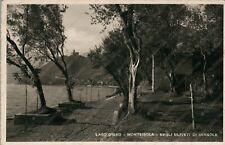 SENSOLE Monte Isola Lago d'Iseo Uliveti Brescia Cartolina