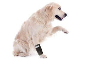 Nature Pet Medium Dog Wrist Brace / Wrist Joint Bandage Canine Front Leg Brace