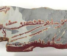 Sonora Dendritic Rhyolite Slab Premium Grade Mexico 6.4