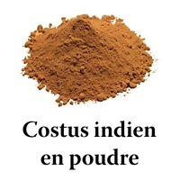 costus indien en poudre 40 gr