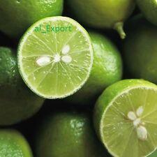Citrus aurantiifolia key RARE Lime 20 SEEDS Fresh  Live Organic germinate seeds