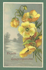 PRETTY C1910'S CONGRATULATIONS POSTCARD YELLOW POPPIES STEWART & WOOLF