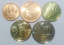ZAMBIA 5 Coins set 1 2 10 50 *2 ngwee mix year Africa wild animals UNC
