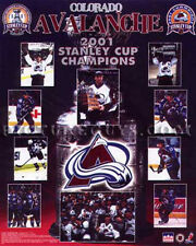 Colorado Avalanche 2001 Stanley Cup Championship Picture Plaque