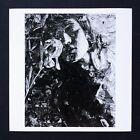 Vik Muniz The White Iris Weston Signed Photograph Magnum Aperture Square Print