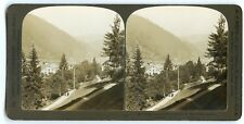 STEREOSCOPE / STEREOVIEW / H.C WHITE / TRIBERG A POPULAR SUMMER / GERMANY