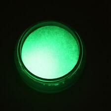 10Color Acrylic FLUORESCENT Powder Glow In the Dark Manicure Nail Art Pigment