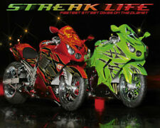Streak Life Red Green Custom Sport Bikes Motorcycle Poster 20x16