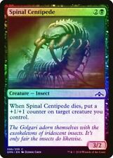 Spinal Centipede Foil Guilds of Ravnica Nm Black Common Magic Card Abugames