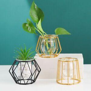 Retro Iron Vase Hydroponic Plant Flower Line Vase Terrarium Home Decoration