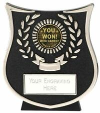 Emblems-Gifts Curve Silver You Won Who Cares Award Trophy With Free Engraving