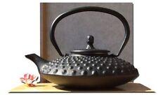 Tetsubin Japanese style Big hobnail black Cast Iron tea pot kettle 0.8L - GOTO b