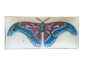 John Derian Decorative Plate