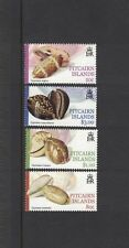 2001 Pitcairn Islands, Cowrie Shells, SG 609/12, MUH, Set of Four