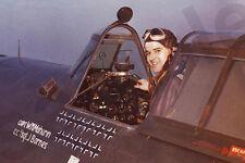 aviation art Bud Mahurin P 47 Thunderbolt photo 56th Fighter Group USAAF WW2