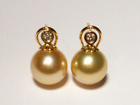 11mm golden South Sea pearl earrings,diamonds,solid 18k yellow gold.