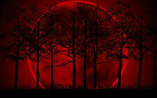 Large Framed Print - Giant Red Moon behind Dark Gothic Wood (Picture Poster Art)