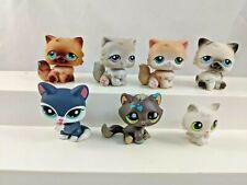Littlest Pet Shop Cats Lot Persian Tabby Kitten