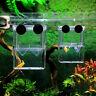 Floating Aquarium Fish Tank Double Breeding Breeder Box Hot Rearing Trap Sa E1H8