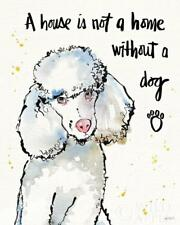 """POODLE FRENCH WHITE DOG FINE ART PRINT """"A House is not a Home Without a Dog"""""""