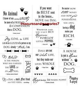 CLOUD 9 Clear Stamps SIMPLE THOUGHTS DOG 8X8